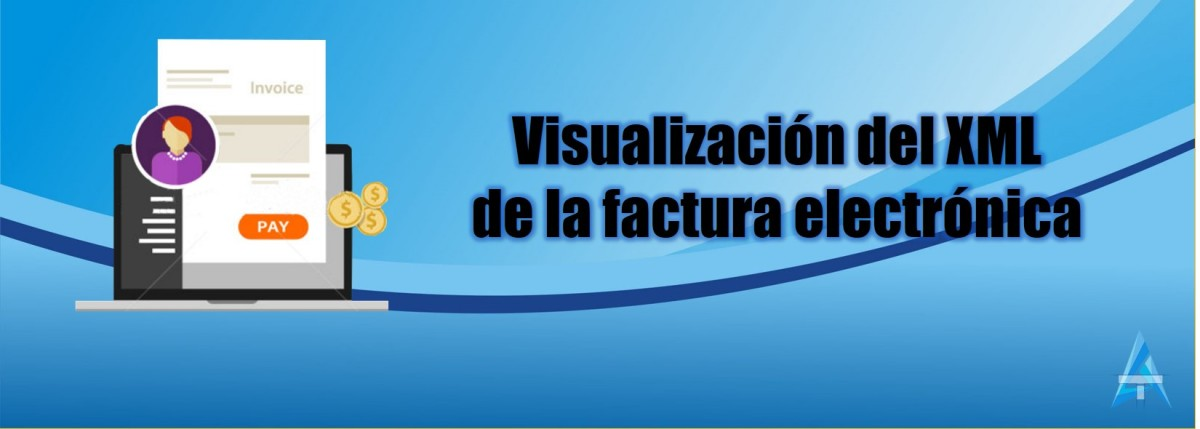 Visualizar el XML de la Factura electronica